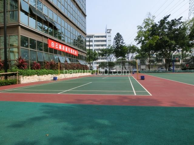 行政楼边上的羽毛球场和篮球场