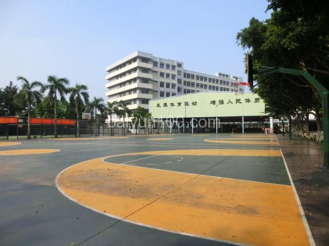 室外篮球场和室内篮球场